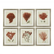 Eichholtz Coral Antique Red Set of 6 Prints